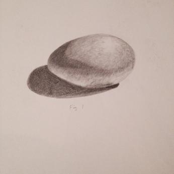 egg-study